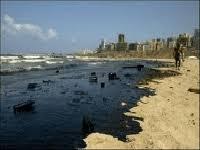 Oilzorb abzorbs oil on the Beach